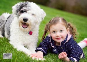 Sarah Holmstrom BestFriends GP Pets